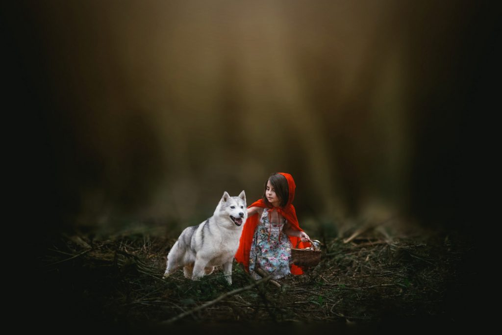 little red riding hood kid session limoges